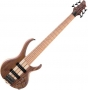 bass-6-strings